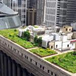 giardino_pensile_come_fare_creare_realizzare_giardino_pensile_tetto_verde_coltivare_verdura_sul_tetto_giardini_pensili_tetti_verdi_7