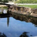 laghetto-da-giardino-in-pietra-77988-2223453