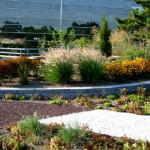 realizzazione-di-giardini-pensili
